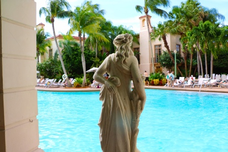 biltmore pool miami