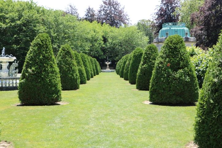 the elms backyard